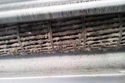 อันตรายจากการไม่ล้าง แอร์และตู้เย็น พร้อมวิธีทำความสะอาดอย่างถูกต้อง