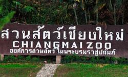 สวนสัตว์เชียงใหม่ แหล่งท่องเที่ยวติดอันดับภาคเหนือ
