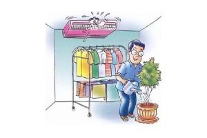 ข้อแนะนำสำหรับการปลูกต้นไม้ และตากผ้าในห้องแอร์